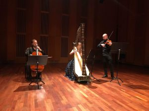Trio harfa, housle, violoncello